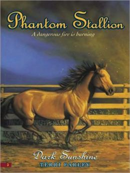 Dark Sunshine (Phantom Stallion Series #3)