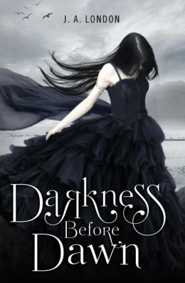Darkness Before Dawn (Darkness Before Dawn Series #1)