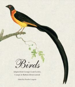 Birds: Mini Archive