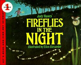 Fireflies in the Night