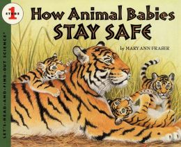 How Animal Babies Stay Safe
