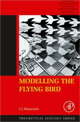Modelling the Flying Bird