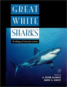 Great White Sharks: The Biology of Carcharodon carcharias
