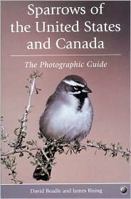 Sparrows of the United States and Canada: A Photographic Guide