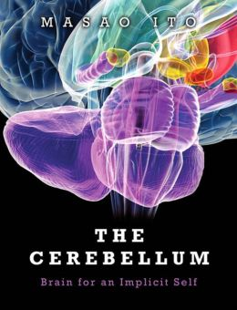 The Cerebellum: Brain for an Implicit Self