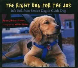 Harcourt School Publishers Storytown: Challenge Trade Book Story 2008 Grade 3 Right Dog/Job