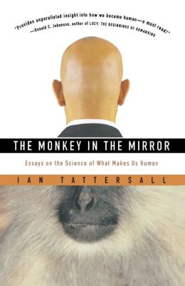 Monkey In The Mirror Pa