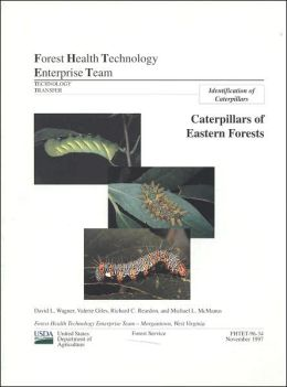 Caterpillars of Eastern Forests