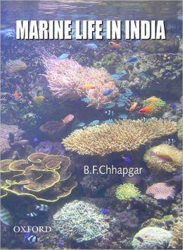 Marine Life in India
