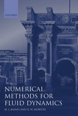 Numerical Methods for Fluid Dynamics IV