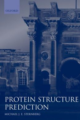 Protein Structure Prediction: A Practical Approach