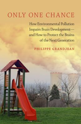 Only One Chance: How Environmental Pollution Impairs Brain Development -- and How to Protect the Brains of the Next Generation