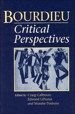 Bourdieu: Critical Perspectives