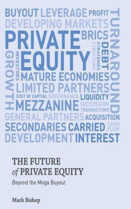 The Future of Private Equity: Beyond the Mega Buyout