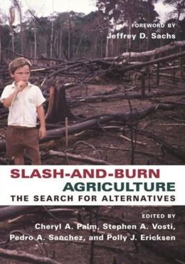 Slash-and-Burn Agriculture: The Search for Alternatives