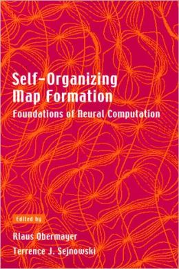 Self-Organizing Map Formation: Foundations of Neural Computation