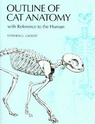 Outline of Cat Anatomy, With Reference to the Human