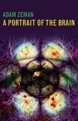 A Portrait of the Brain