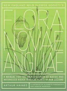 New England Wild Flower Society's Flora Novae Angliae: A Manual for the Identification of Native and Naturalized Higher Vascular Plants of New England