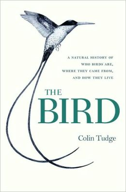 Bird: A Natural History of Who Birds Are, Where They Came From, and How They Live
