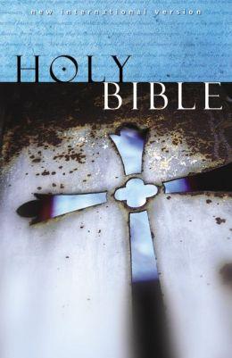 NIV Witness Edition Bible