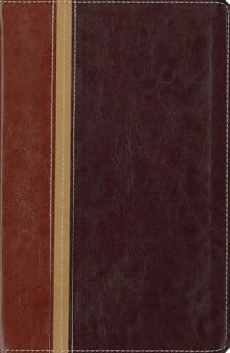 NIV The Message Parallel Study Bible, Personal Size: Updated Numbered Edition