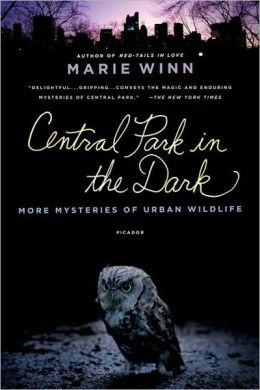 Central Park in the Dark: More Mysteries of Urban Wildlife