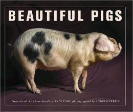 Beautiful Pigs: Potraits of Champion Breeds