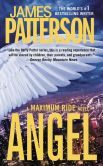 Book Cover Image. Title: Angel - Free Preview:  First 23 Chapters: A Maximum Ride Novel, Author: James Patterson