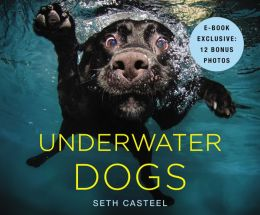 Underwater Dogs (PagePerfect NOOK Book)