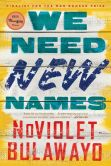 Book Cover Image. Title: We Need New Names, Author: NoViolet Bulawayo
