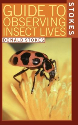 Stokes Guide To Observing Insect Lives