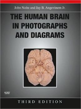 The Human Brain in Photographs and Diagrams with CD-ROM
