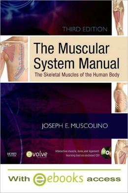 The Muscular System Manual - Text and E-Book Package: The Skeletal Muscles of the Human Body