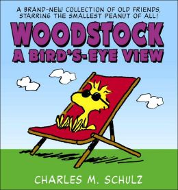 Woodstock, A Bird's-Eye View