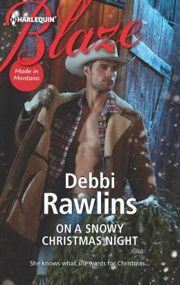 On a Snowy Christmas Night (Harlequin Blaze Series #725)