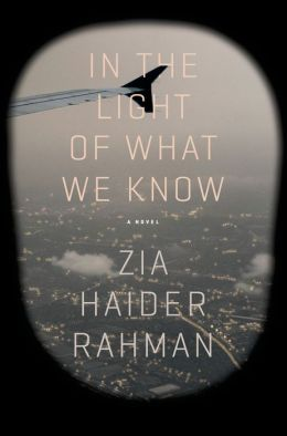 In the Light of What We Know: A Novel