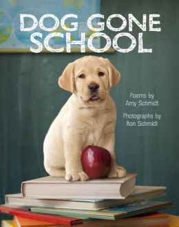 Dog-Gone School