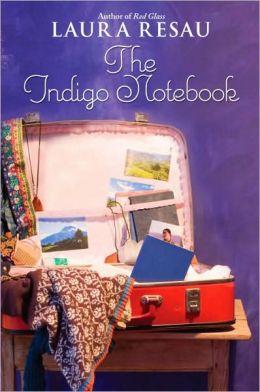 The Indigo Notebook (Notebook Series #1)