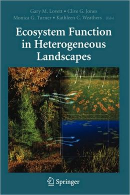 Ecosystem Function in Heterogeneous Landscapes