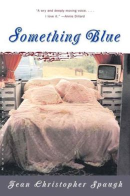 Something Blue: A Novel