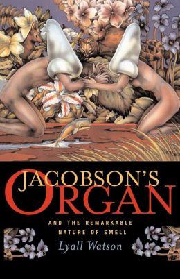 Jacobson's Organ