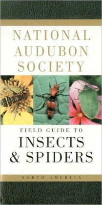 National Audubon Society Field Guide to North American Insects and Spiders (National Audubon Society Feild Guide Series)