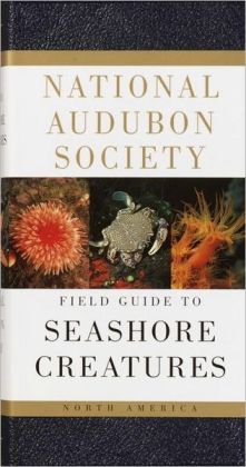 National Audubon Society Field Guide to North American Seashore Creatures