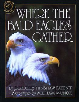 Where the Bald Eagles Gather