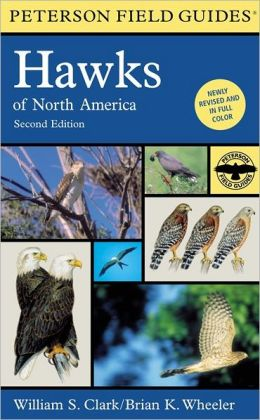 A Field Guide to Hawks of North America