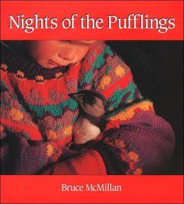 Nights of the Pufflings