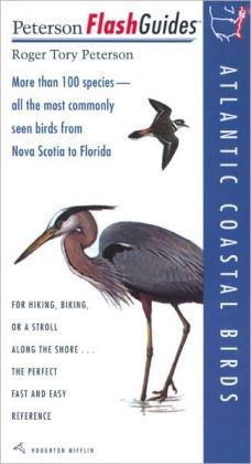 Atlantic Coastal Birds