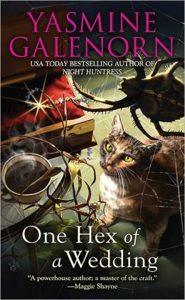 One Hex of a Wedding (Chintz and China Mystery Series #5)