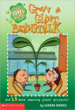 how to grow a beanstalk in a cup
